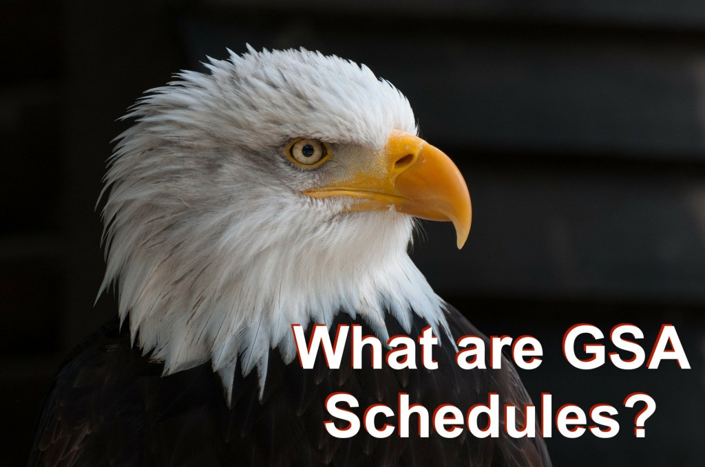 What is a GSA Schedule?